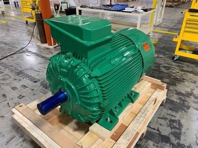 Maxeff Induction Motor